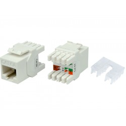 Linkbasic Cat6a UTP Keystone Jack